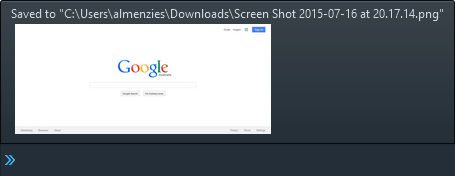 Firefox full page screenshot